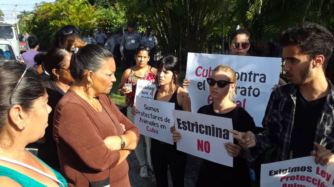 En Cuba elaboran disposiciones jurídicas para el bienestar animal