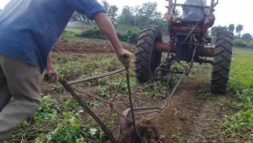 Campesinos cubanos roturan un terreno.