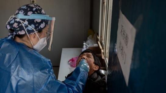 OMS va a Wuhan mientras la pandemia aumenta en China — Coronavirus